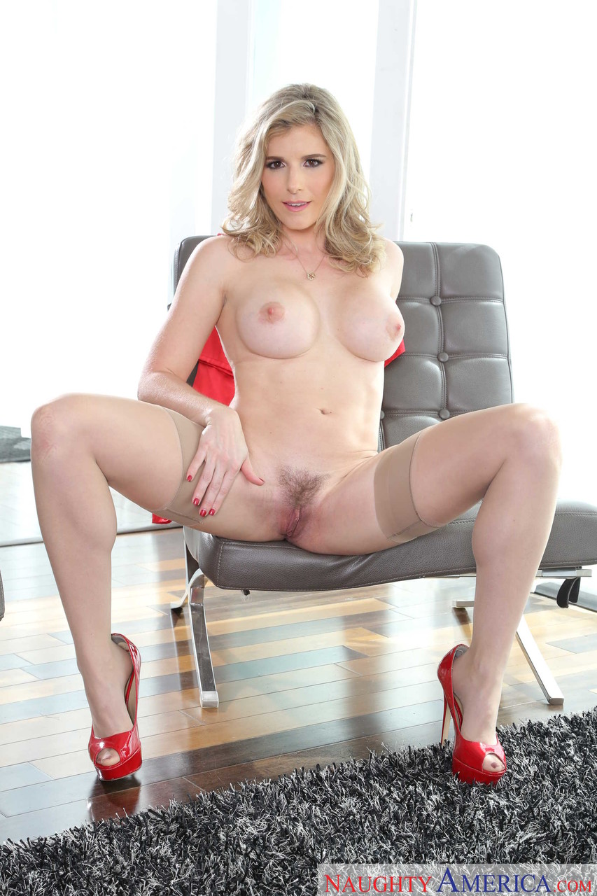 Cory chase & sean lawless in housewife 1 on 1