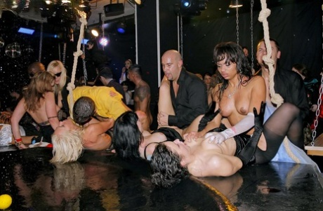 Crazy bitches go wild in a groupsex orgy and get assed and cunts screwed rough