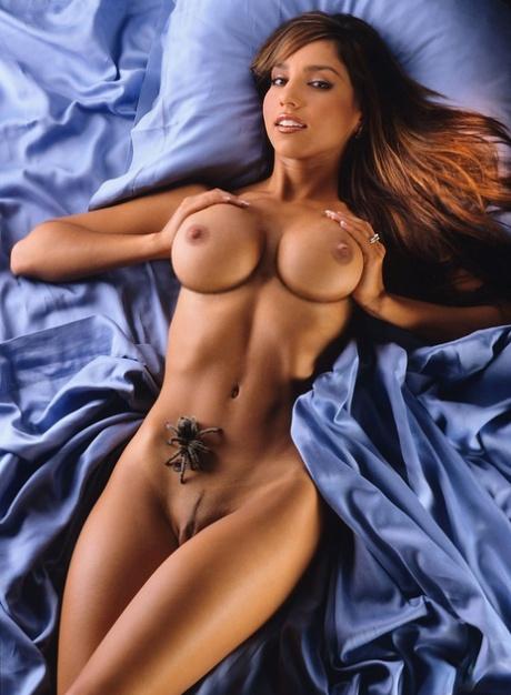 Playboy bilder plankl joana gma.cellairis.com